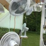 Greenhouse Lighting & Fans